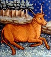 segno zodiacale: TORO