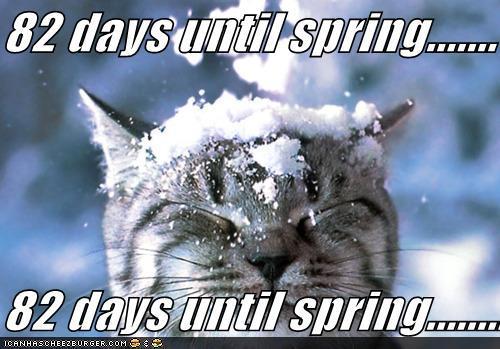 Post Thumbnail of The Spring Awaiting Winner Post