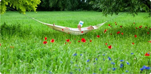 Leer al aire libre for Peces para estanques al aire libre