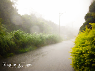 Okinawa Typhoons, Rain and Fog