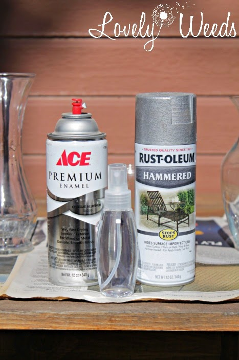 The supplies: spray paint, water, and a paper towel