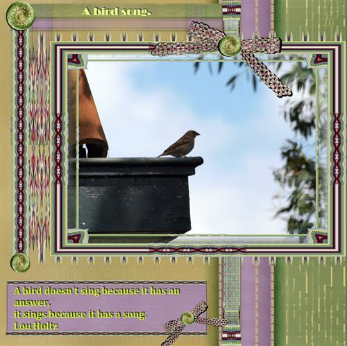 A bird song
