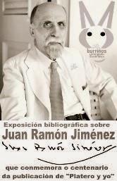 http://www.pinterest.com/bibloleiros/100-anos-de-platero-y-yo-vol-2/