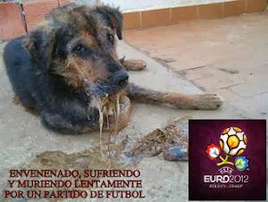 Miles de perros asesinados en Ucrania.