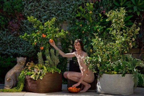 Ri pet giardino verticale in pet da riciclo con woolly - Giardini di casa ...