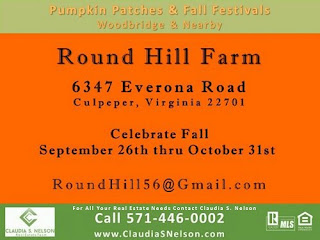 Pumpkin Patches near Woodbridge Virginia 2015, Round Hill Farm Culpeper