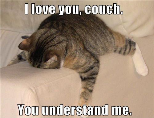 i love that couch