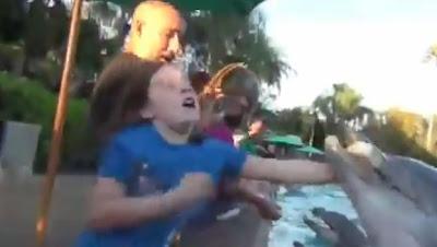delfin muerte de la mano de una niña