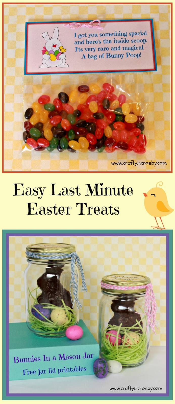 Easy Easter DIY, Easter Treats, Bunny Poop, Bunnies in a Jar, edible Easter grass, chocolate bunny, jelly beans