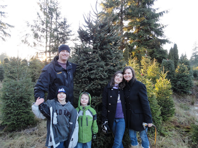 Turtle-Squares-Griswald-Family-Tree.jpg