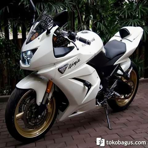 Kawasaki Ninja 250 4 Tak