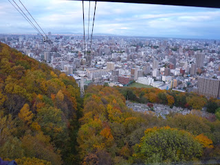 Ropeway cables, Mt. Moiwa and Sapporo city as seen from the Mount Moiwa ropeway