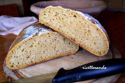 Pane ciabatta con lievito madre ricetta base