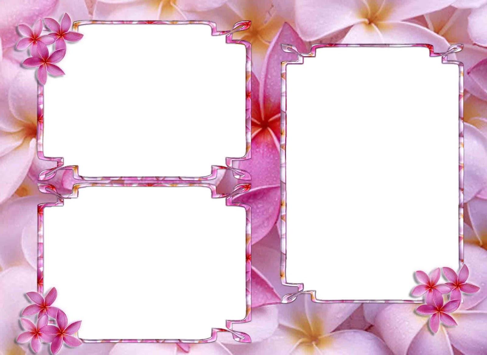 Love Png Frame Png Frame