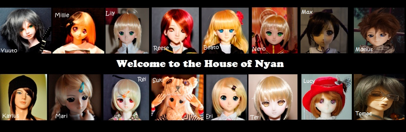 House Of Nyan