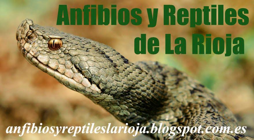 Anfibios y Reptiles de La Rioja