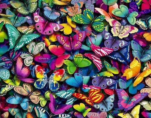 Farfalle farfalle - Immagini di farfalle a colori ...