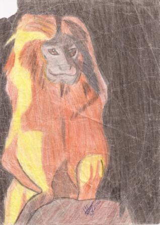 ton andrade artes mico leão dourado