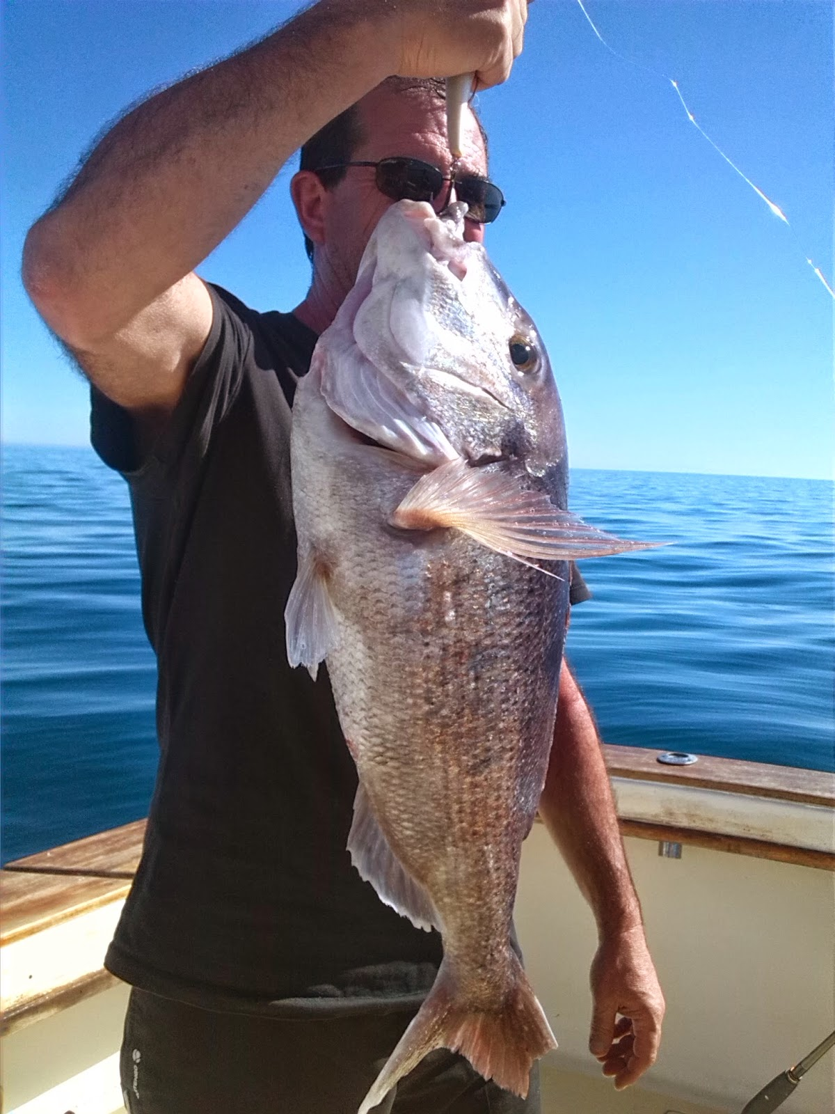 Fishing trip in Marbella, Malaga.