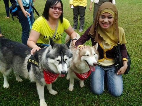 Penjelasan hukum pegang dan bela anjing dari sudut Islam