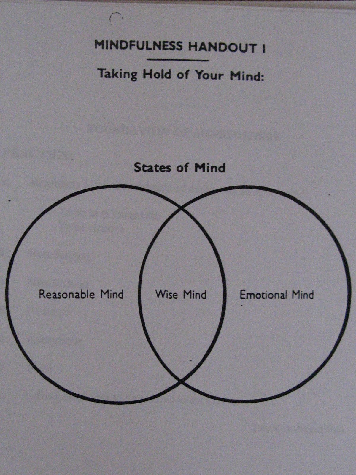 Healing From BPD Borderline Personality Disorder Blog 2011 – Wise Mind Worksheet