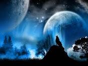 luna llena    \ ('.') /