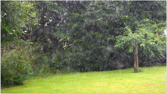 Rain, raining, rain © Annie Japaud Photography 2013