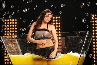 Sneha Ullal Latest  Picture Gallery In Action 3D Telugu Movie  0007.jpg