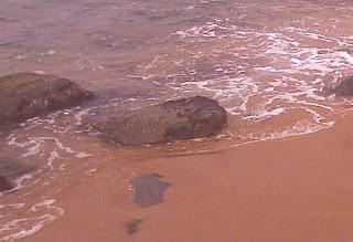 ocean wave sand