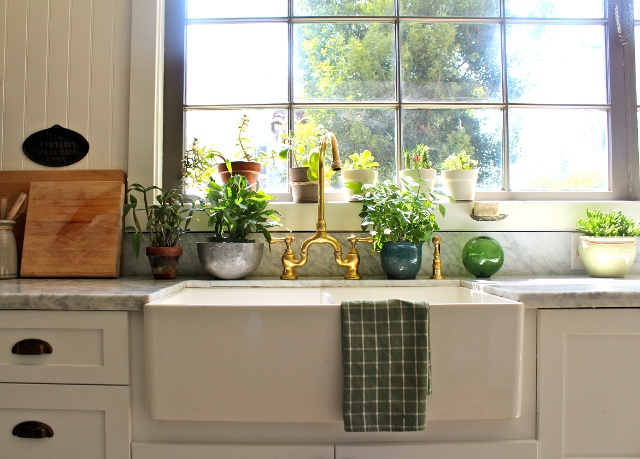 decoraci n decoracion colocar plantas en el hogar