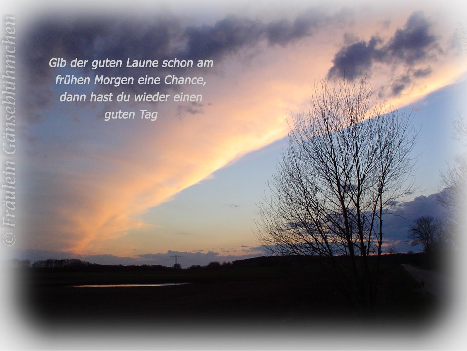 fräulein gänseblümchen: dezember 2012
