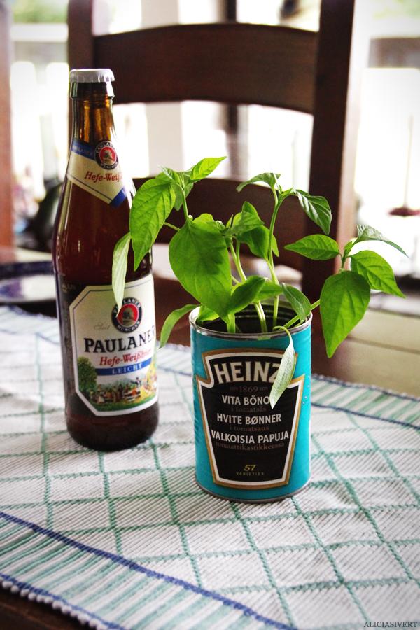 aliciasivert, alicia sivert, alicia sivertsson, midsommar, midsummer, paprika, heinz, vita bönor i tomatsås, krukväxt, plantera, öl, beer