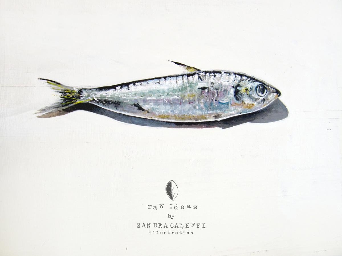sardina di sandra caleffi