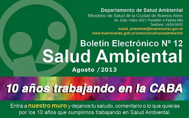 Boletín 10 años de Salud Ambiental Agosto 2013