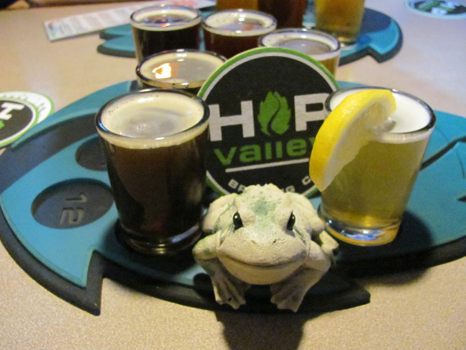 Frog posing with the flight of beverages at Hop Valley Brewery in Eugene, Oregon