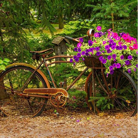 L 39 arte del riciclo creativo giardini particolari - Giardini particolari ...