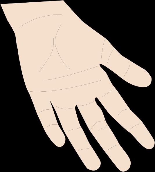 Desenho colorido Órgãos do sentido mão