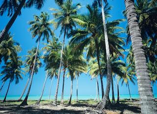 Holiday Inn Express Maceio Ponta Verde viagem turismo negócios praias lindas
