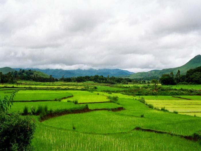 Araku valley tourist information,Vizag araku