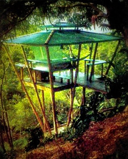 how to build a tree house ayanahouse