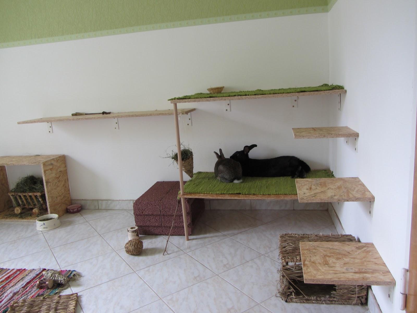 ninstuff haltung von kaninchen. Black Bedroom Furniture Sets. Home Design Ideas