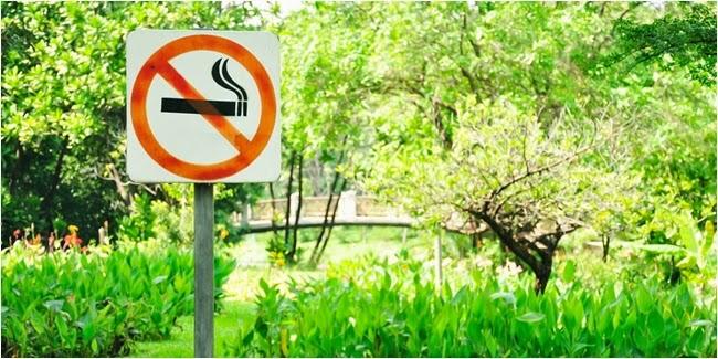 Hubungan Rokok Dan Penyakit Jantung
