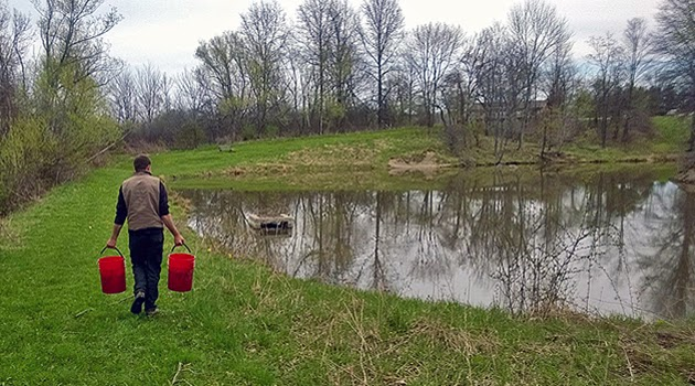 Lake metroparks fishing report ponds stocked and ready to for Stocked fishing ponds