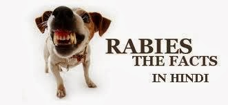 Rabies-information-in-hindi