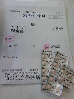 写真:処方された「ブレドニン錠 5mg」4日分で全部で24錠