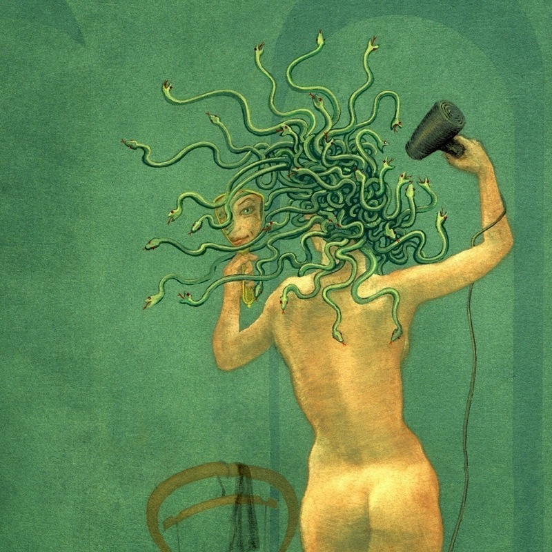 Medusa and the Hairdryer by Nancy Farmer