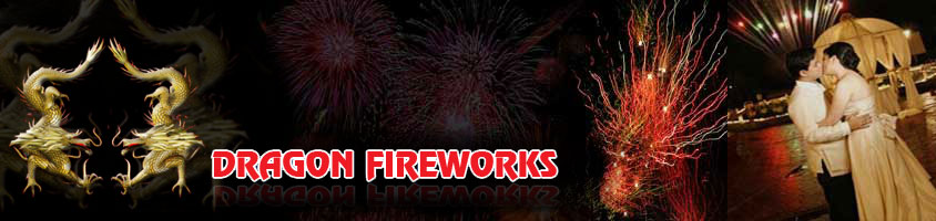 Dragon Fireworks Incorporated | Wedding Special Effects in Metro Manila