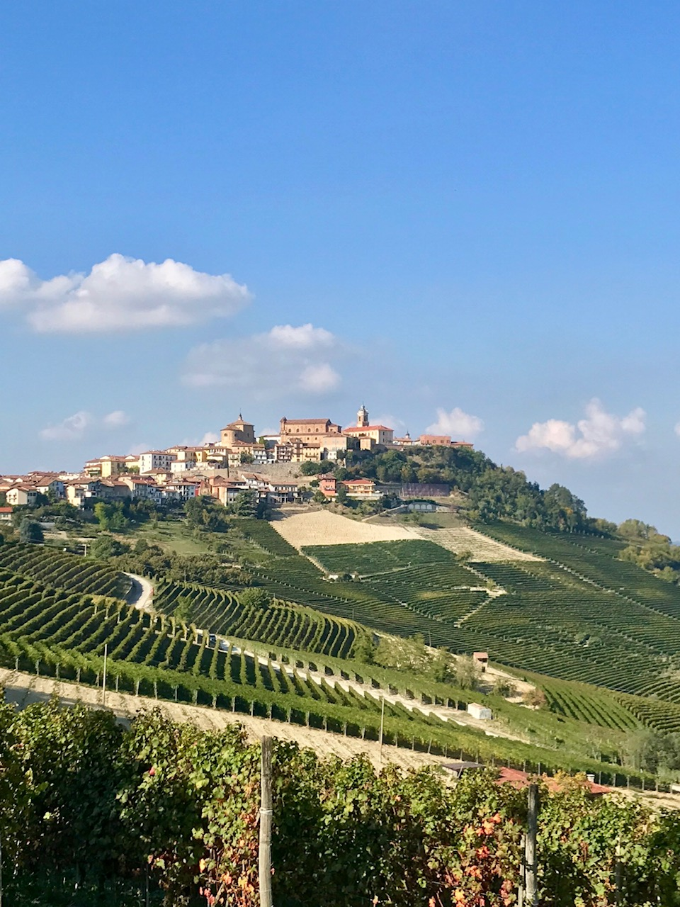 A Taste of Piemonte
