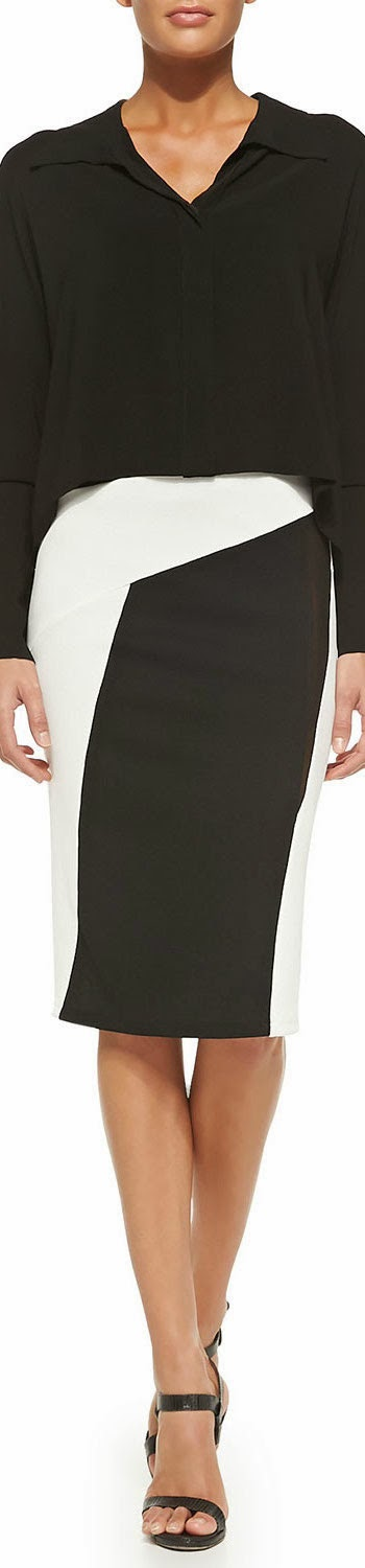 Donna Karan Pull-On Pencil Collage Skirt& Cropped Silk Blouse
