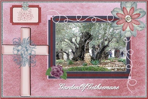 lo 4 - March 2016 - Garden of Gethsemane